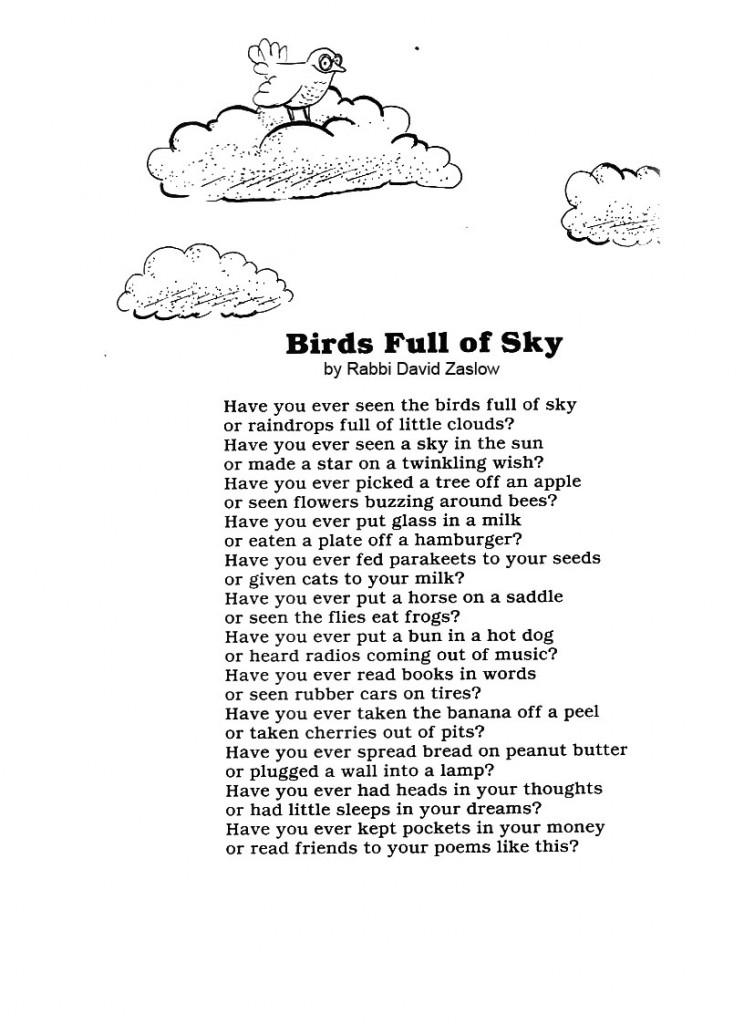 birdsfullofsky copy