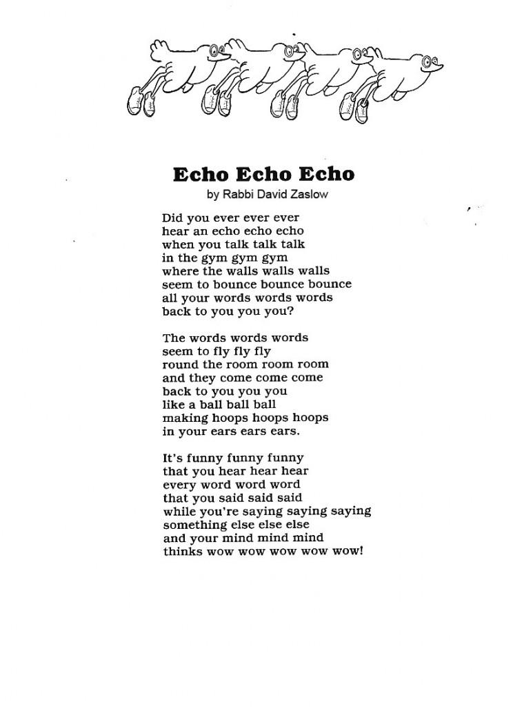 echoechoecho copy