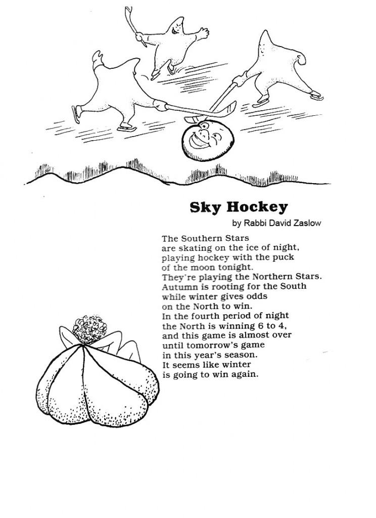 skyhockey copy